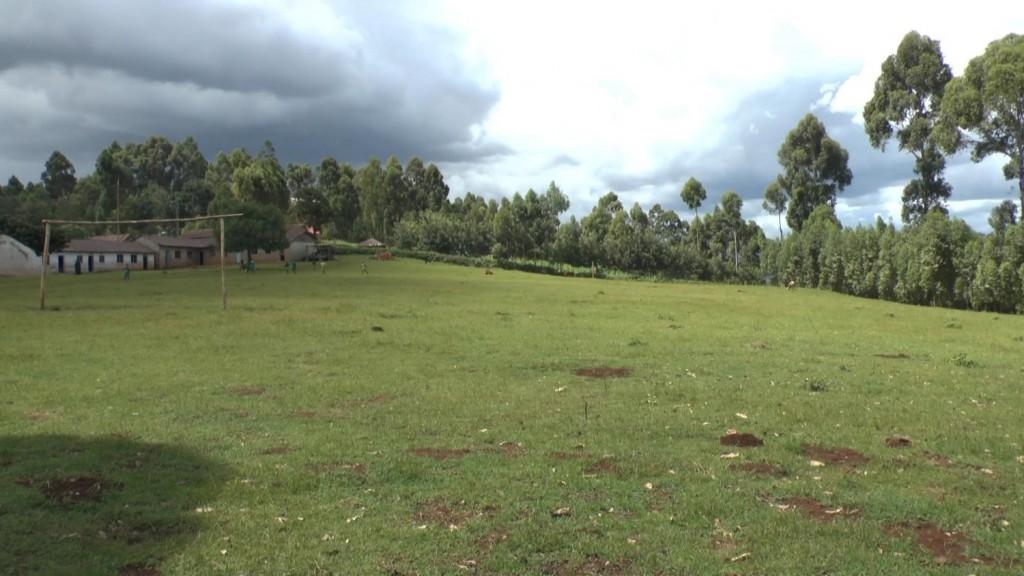 Mongoni Field